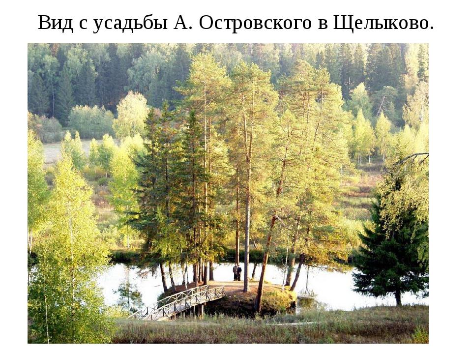 Вид с усадьбы А. Островского в Щелыково.