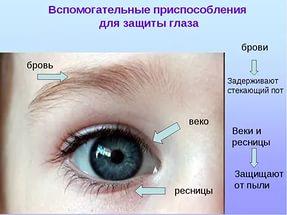 hello_html_22b1c3ac.jpg