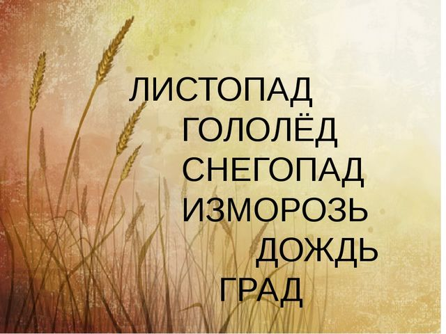 ЛИСТОПАД ГОЛОЛЁД СНЕГОПАД ИЗМОРОЗЬ ДОЖДЬ ГРАД