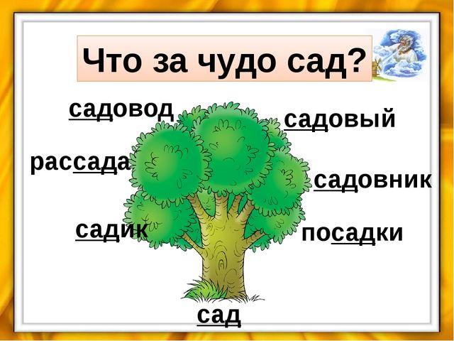 сад садик рассада садовод садовый садовник посадки Что за чудо сад?