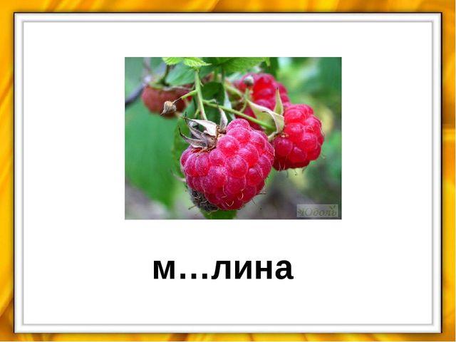 м…лина
