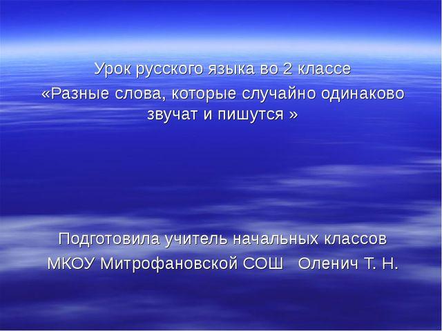 Урок русского языка во 2 классе «Разные слова, которые случайно одинаково зв...