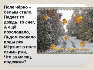Поле чёрно – белым стало, Падает то дождь, то снег, А ещё похолодало, Льдом с