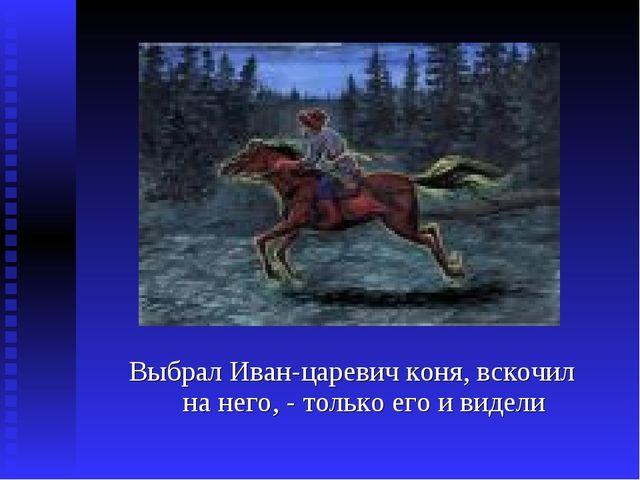 Выбрал Иван-царевич коня, вскочил на него, - только его и видели