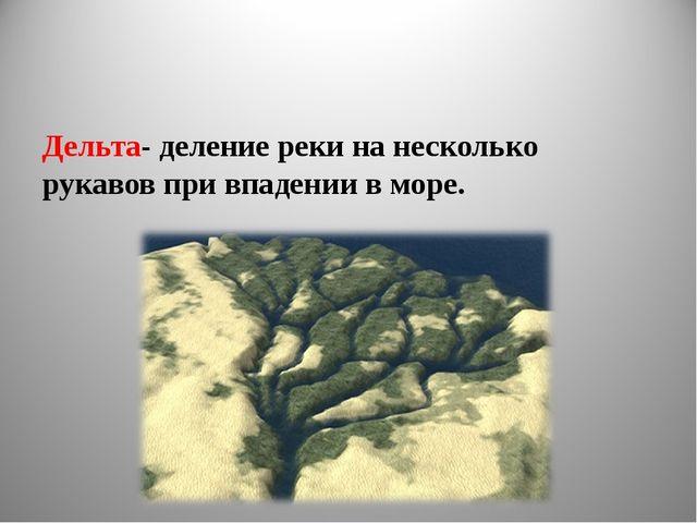 Дельта- деление реки на несколько рукавов при впадении в море.