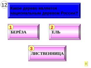 Какое дерево является национальным деревом России? 12 БЕРЁЗА 1 ЕЛЬ 2 ЛИСТВЕНН