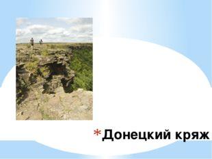 Донецкий кряж