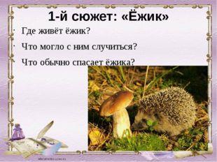1-й сюжет: «Ёжик» Где живёт ёжик? Что могло с ним случиться? Что обычно спаса