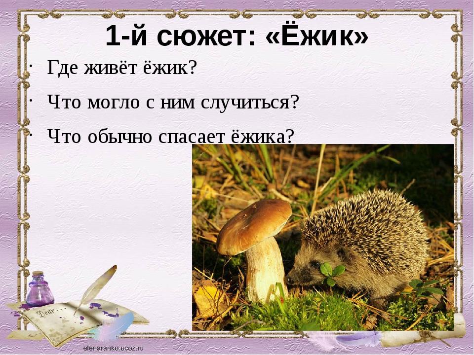 1-й сюжет: «Ёжик» Где живёт ёжик? Что могло с ним случиться? Что обычно спаса...