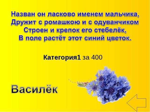 Категория1 за 400