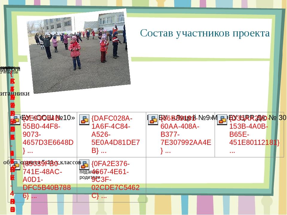 Состав участников проекта