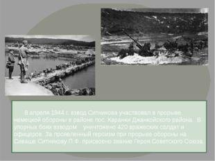 8 апреля 1944 г. взвод Ситникова участвовал в прорыве немецкой обороны в рай