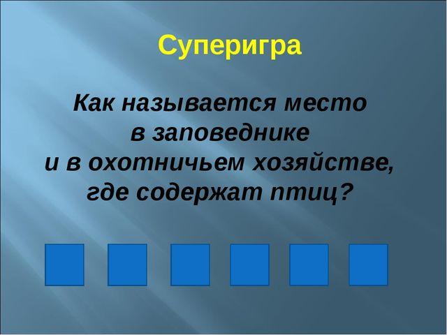 Суперигра Как называется место в заповеднике и в охотничьем хозяйстве, где со...