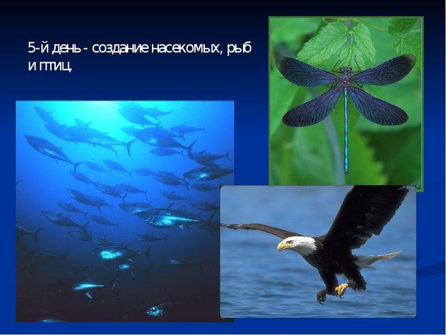 5-й день - создание насекомых, рыб и птиц.