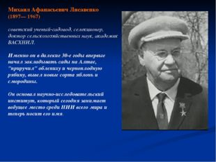 Михаил Афанасьевич Лисавенко (1897— 1967) советский ученый-садовод, селекцион