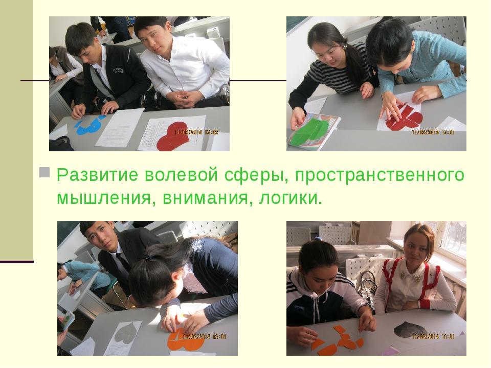 Развитие волевой сферы, пространственного мышления, внимания, логики.