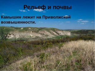 Рельеф и почвы Камышин лежит на Приволжской возвышенности.