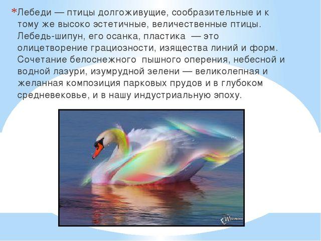 Лебеди — птицы долгоживущие, сообразительные и к тому же высоко эстетичные, в...