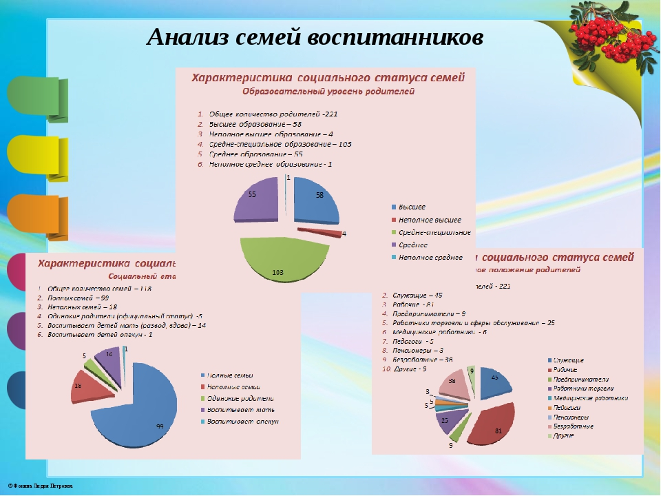 Анализ семей воспитанников © Фокина Лидия Петровна