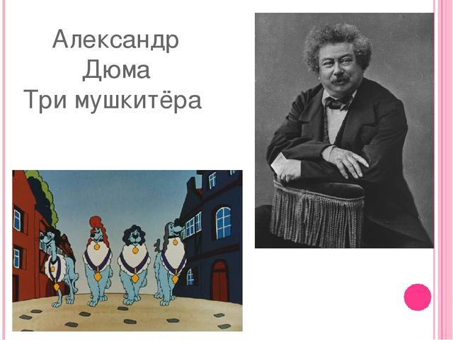 Александр Дюма Три мушкитёра