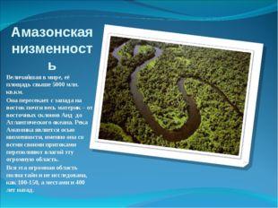 Амазонская низменность Величайшая в мире, её площадь свыше 5000 млн. кв.км. О
