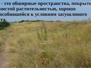 Степь - это обширные пространства, покрытые травянистой растительностью, хоро