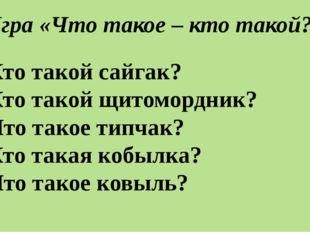 Игра «Что такое – кто такой?» •Кто такой сайгак? •Кто такой щитомордник? •