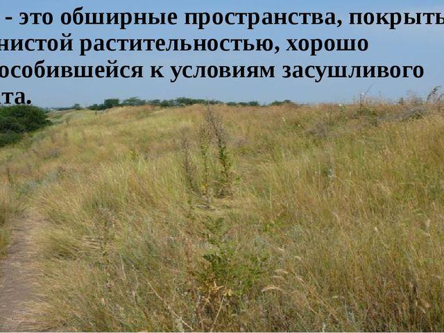 Степь - это обширные пространства, покрытые травянистой растительностью, хоро...