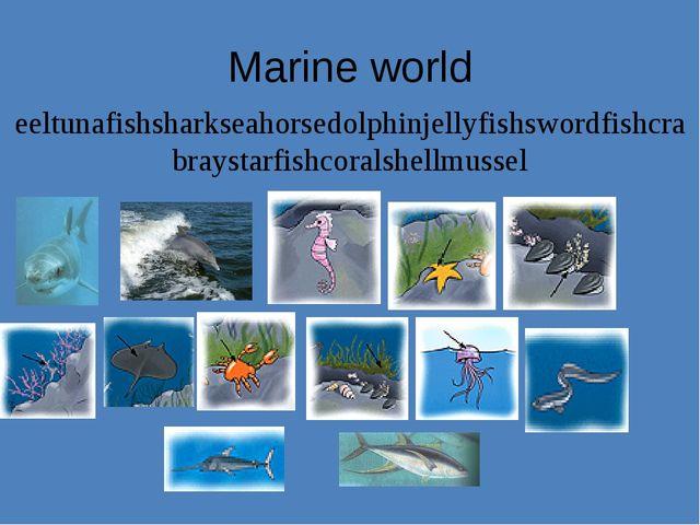 Marine world eeltunafishsharkseahorsedolphinjellyfishswordfishcrabraystarfish...