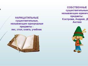 НАРИЦАТИЛЬНЫЕ существительные, называющие однородные предметы : лес, стол, кн