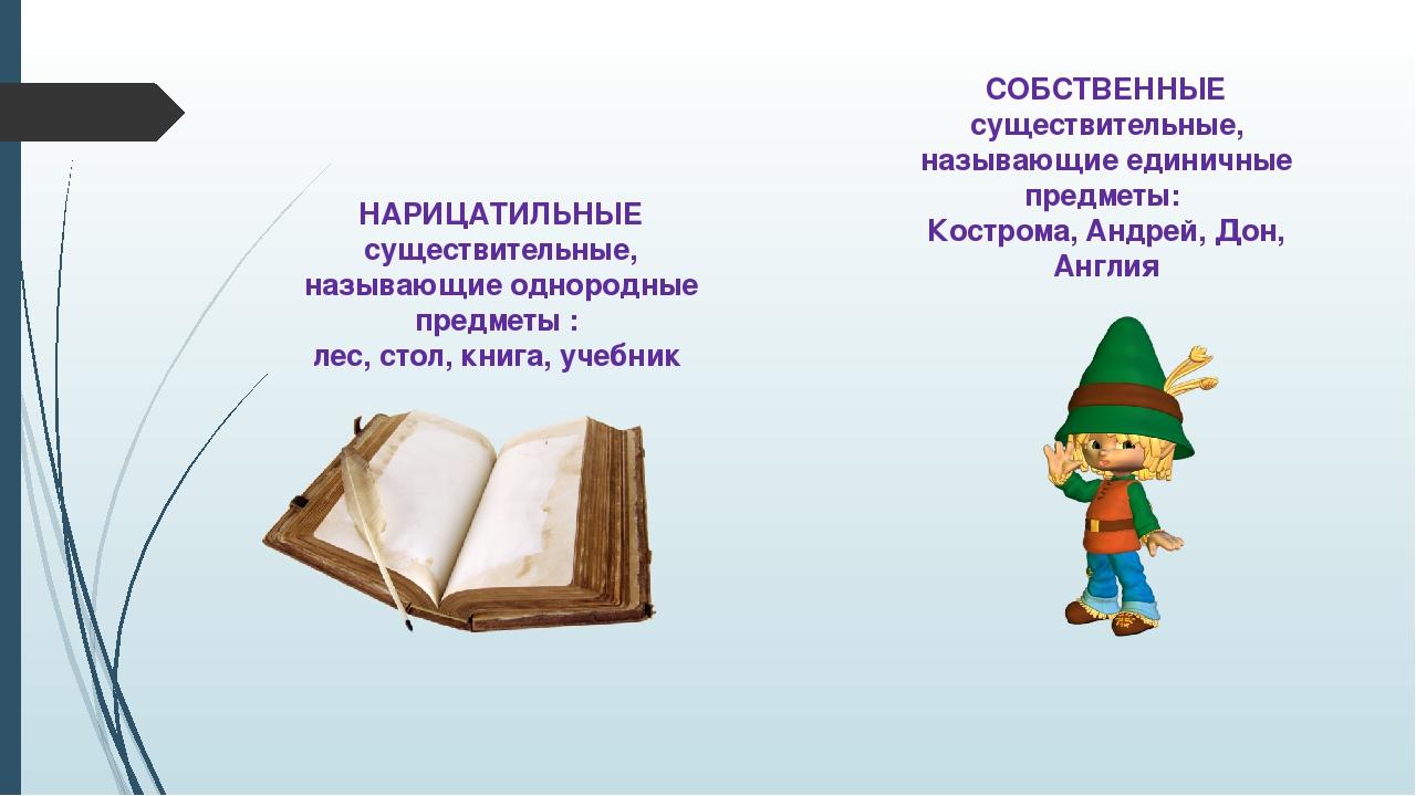 НАРИЦАТИЛЬНЫЕ существительные, называющие однородные предметы : лес, стол, кн...