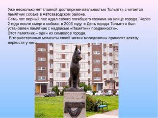 Уже несколько лет главной достопримечательностью Тольятти считается памятник