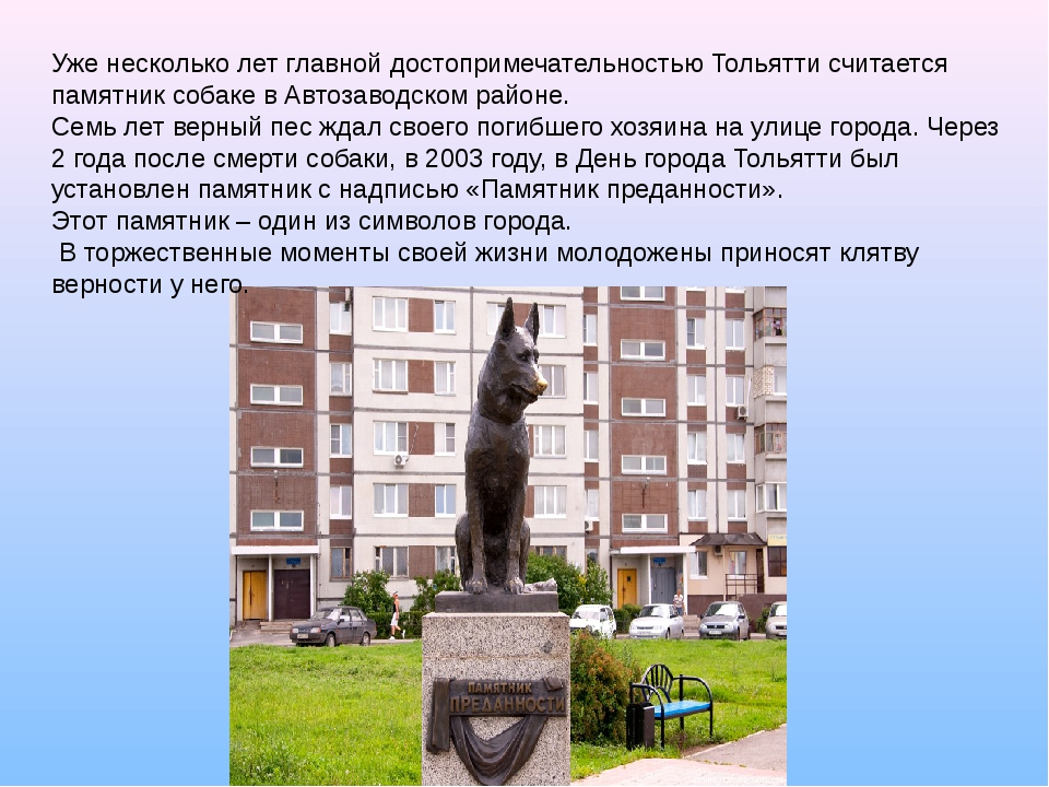 Уже несколько лет главной достопримечательностью Тольятти считается памятник...