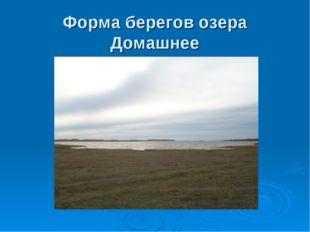 Форма берегов озера Домашнее
