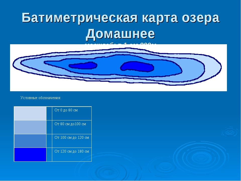 Батиметрическая карта озера Домашнее масштаб: в 1 см-200м Условные обозначени...