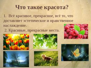 * Что такое красота? 1. Всё красивое, прекрасное, всё то, что доставляет эсте