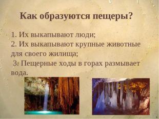 * Как образуются пещеры? 1. Их выкапывают люди; 2. Их выкапывают крупные живо