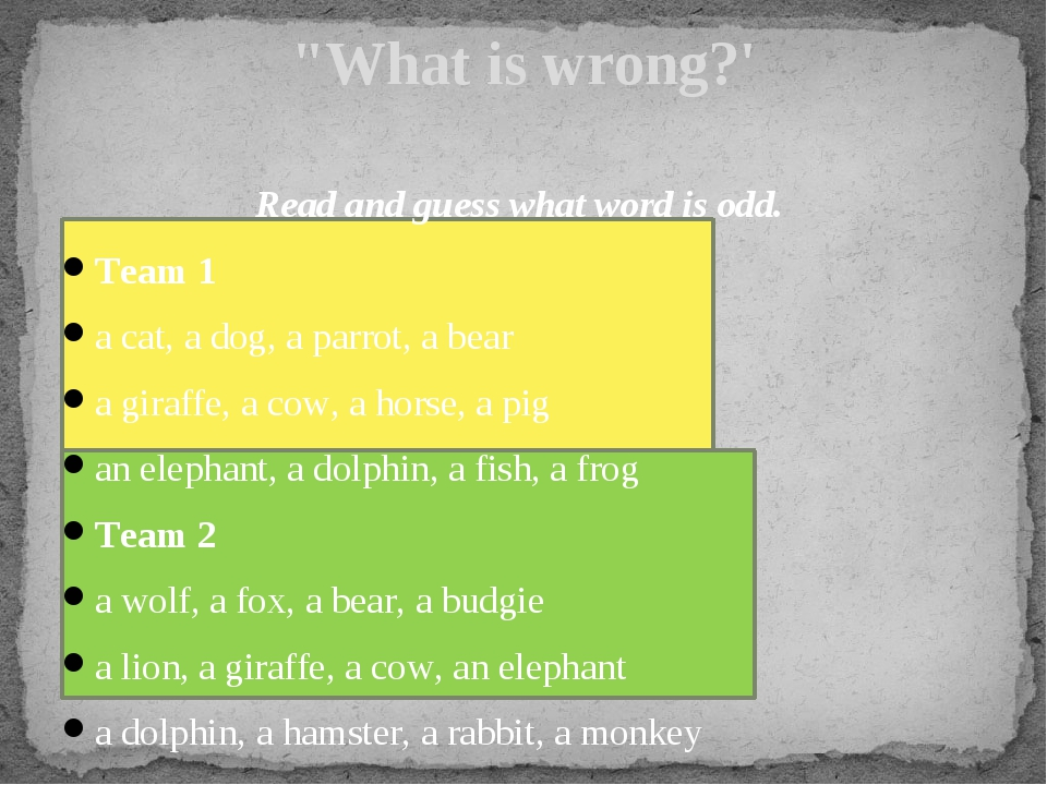 Read and guess what word is odd. Team 1 a cat, a dog, a parrot, a bear a gir...