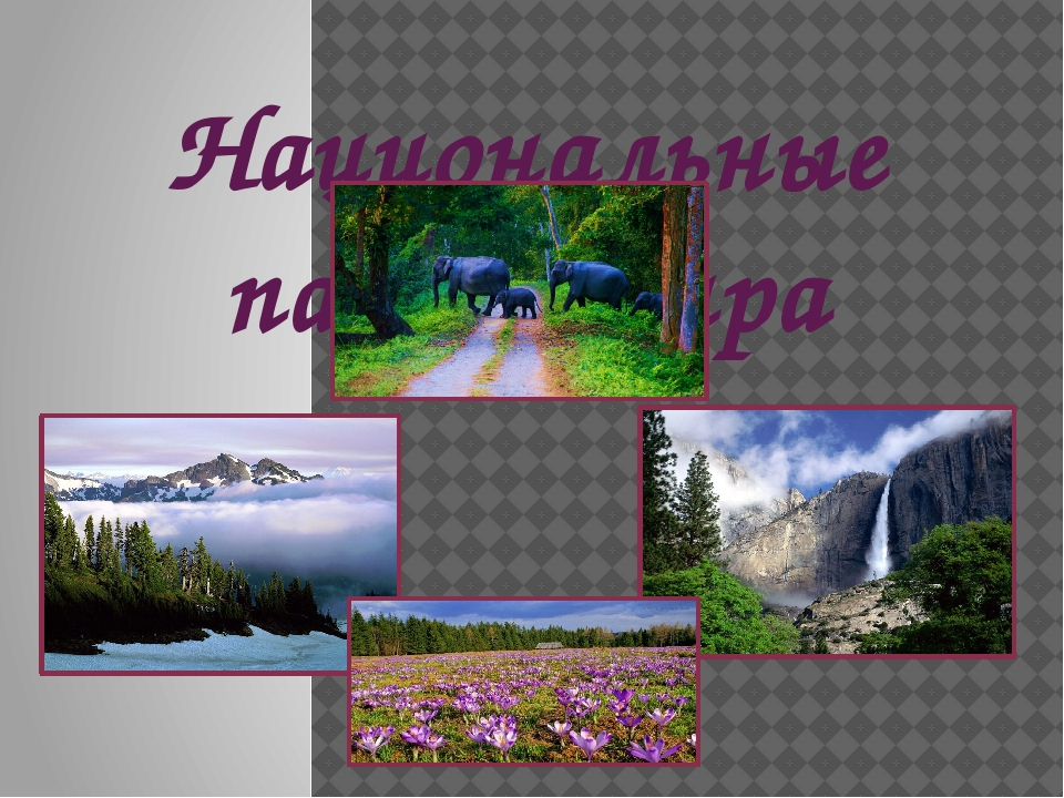 Национальные парки мира