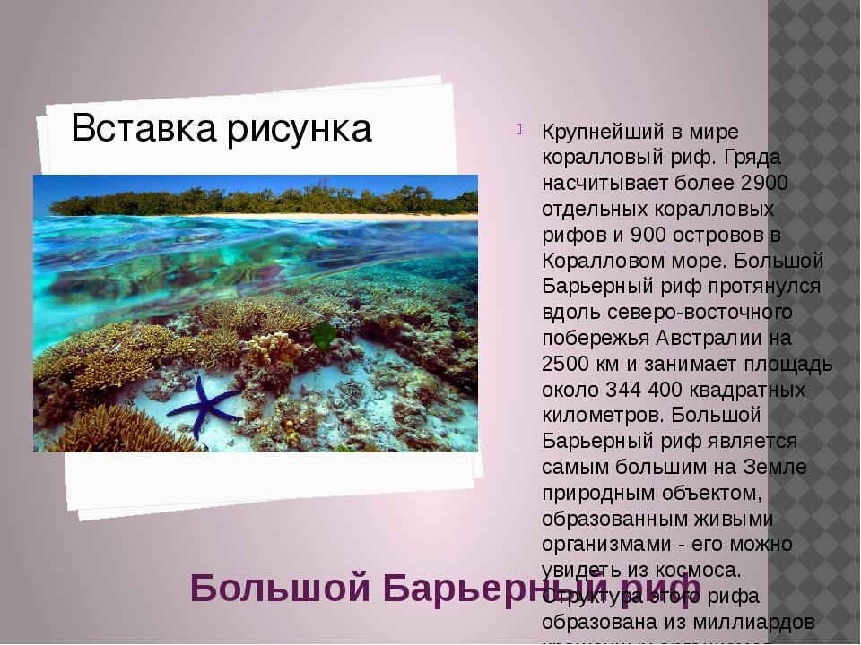 Большой Барьерный риф Крупнейший в мире коралловый риф. Гряда насчитывает бо...