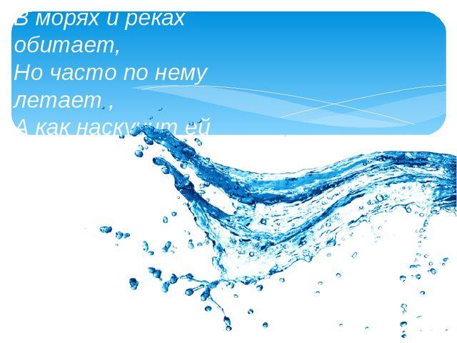 В морях и реках обитает, Но часто по нему летает , А как наскучит ей летать ,...