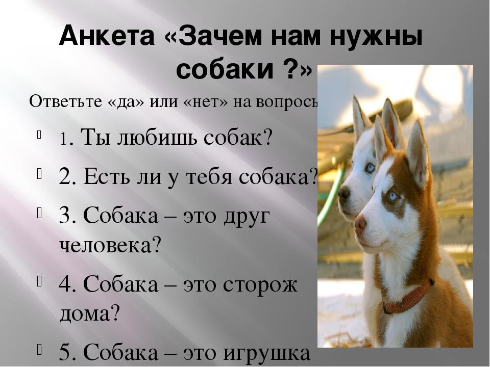 Анкета «Зачем нам нужны собаки ?» Ответьте «да» или «нет» на вопросы: 1. Ты л...