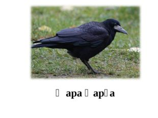 Ҡара ҡарға