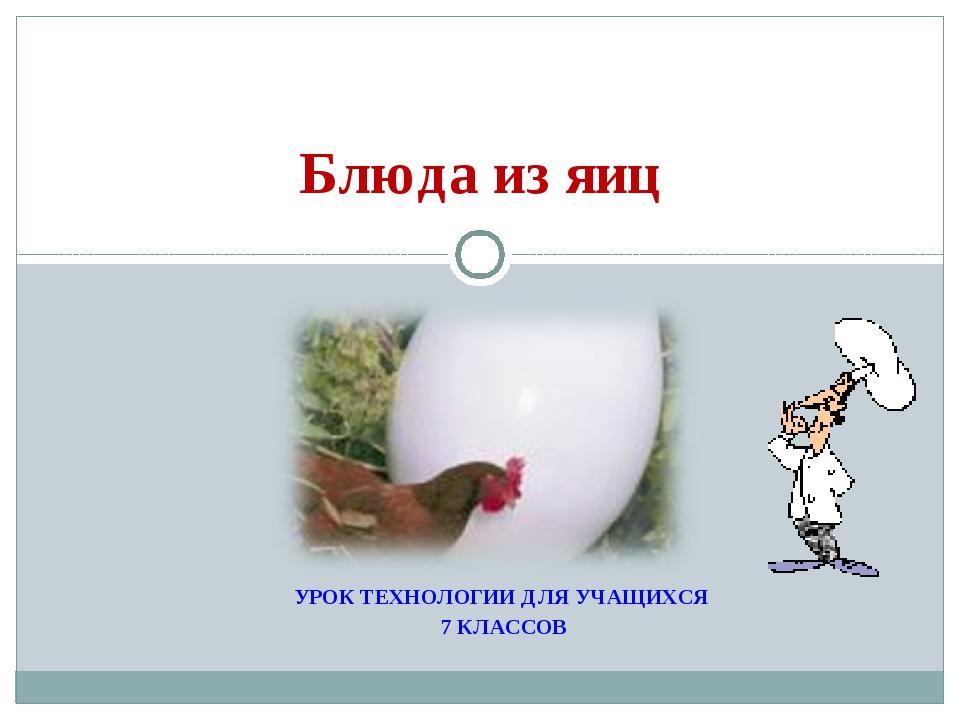 УРОК ТЕХНОЛОГИИ ДЛЯ УЧАЩИХСЯ 7 КЛАССОВ Блюда из яиц