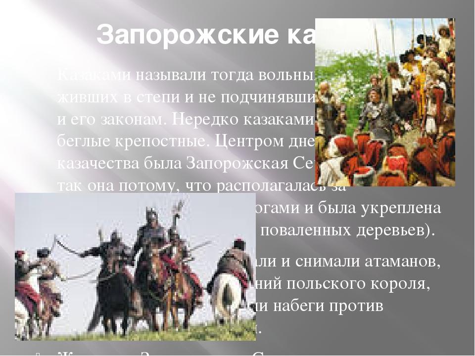 Запорожские казаки Казаками называли тогда вольных людей, живших в степи и не...
