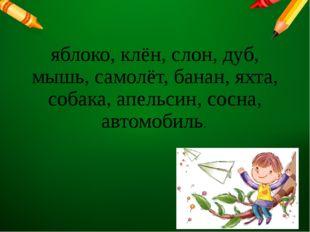 яблоко, клён, слон, дуб, мышь, самолёт, банан, яхта, собака, апельсин, сосна,