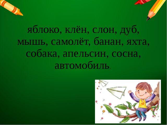 яблоко, клён, слон, дуб, мышь, самолёт, банан, яхта, собака, апельсин, сосна,...