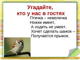 Угадайте, кто у нас в гостях Птичка – невеличка Ножки имеет, А ходить не уме
