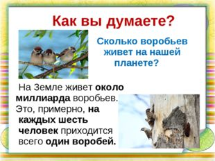 На Земле живет около миллиарда воробьев. Это, примерно, на каждых шесть чело
