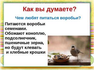Как вы думаете? Чем любят питаться воробьи? по земле передвигаются прыжками и